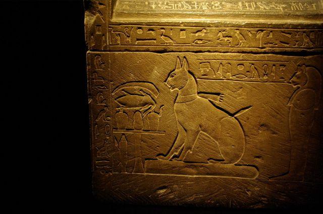 egiziani gatto myt thutmosi