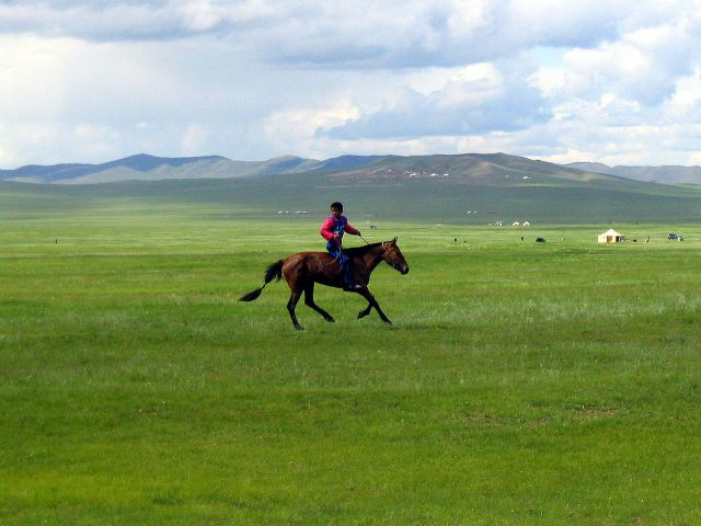 1280px-naadam_rider_2